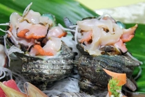 【ご夕食 一例】・・・天然地魚お造り盛り合わせプラン ≪大サザエのお造り≫