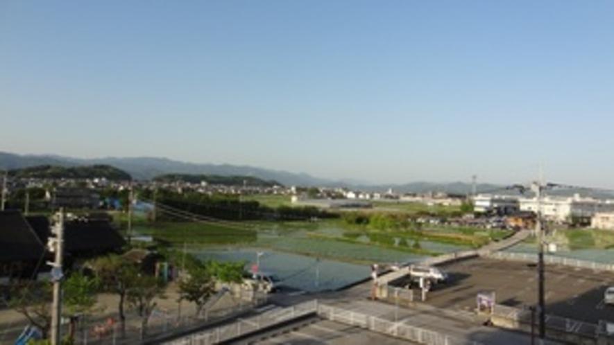 客室からの田園風景(東側)