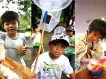夏のファミリープランは「カブトムシ捕り体験」など体験プログラムが盛りだくさん!