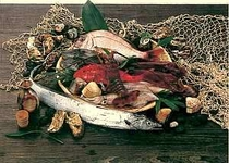 食事には新鮮な旬の魚介類を使用