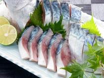 旬の秋鯖の刺身