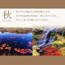 ■秋の見どころご案内
