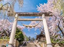 【春の観光】烏帽子山の大鳥居