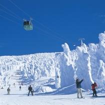 東北最大級のスノーリゾート『蔵王温泉スキー場』で雪質抜群のパウダースノーと樹氷を楽しむ