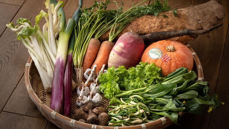 【冬の食材たち】伝統野菜など地元の新鮮な食材を取り揃え、冬ならではの美味しさをお楽しみいただきます