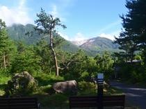敷地内からの景色