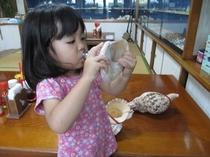 ホラ貝体験