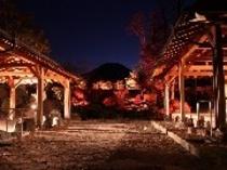 紅富士の湯紅葉ライトアップ