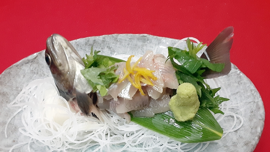 *新鮮な岩魚のお造り。生簀で泳いでいる岩魚を仕入れて、お造りしています。