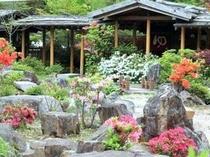 ツツジの香りでいっぱいの大庭園