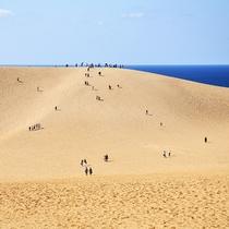 【鳥取砂丘】山陰海岸ジオパークスポット!日本最大級の砂丘からの景色は圧巻(当館より車で約125分)