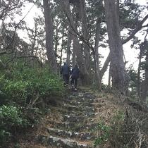 海岸線をハイキング