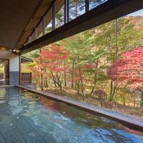 紅葉の大浴場