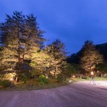 佳松園 夜の中庭