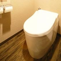 禁煙洋室のスタイリッシュなトイレ