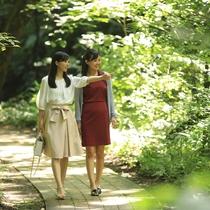 イーハトーブの風景地「釜淵の滝」遊歩道は散策コースとして最適です!