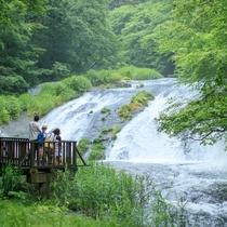 釜淵の滝まで散策に出かけよう♪