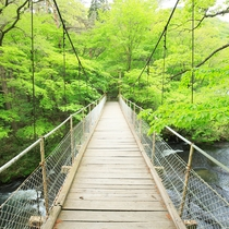 イーハトーブの風景地「釜淵の滝」 遊歩道は散策コースとして最適です!(1周約20分)