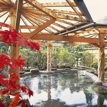隣接するホテル紅葉館の露天風呂 宿泊のお客様は自由に入浴できます。