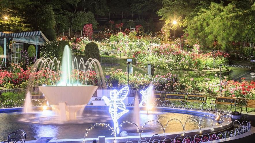 花巻温泉バラ園 ナイトローズガーデン