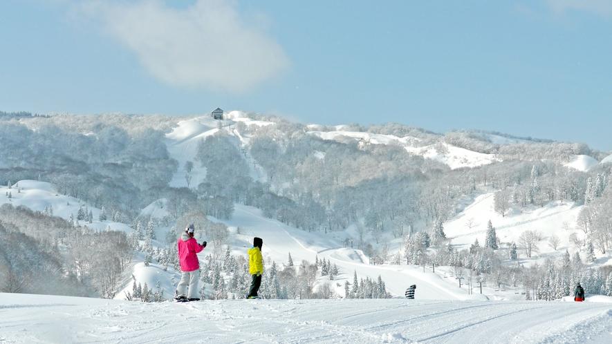 上越国際スキー場 あてまゲレンデ(車で7分!)2021年12月25日オープン予定