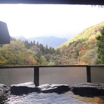 客室半露天風呂からの眺め(秋)