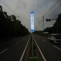 【近隣】カニカキロード(お車で5分)