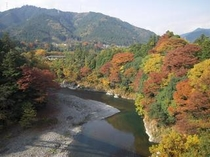 好文橋から見た多摩川と紅葉