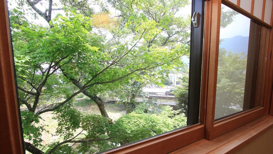 【部屋】和室からの眺め
