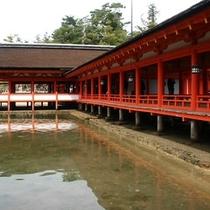 厳島神社 東回廊からの鳥居_★