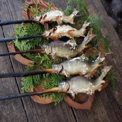 じゃぶじゃぶ池で狩野川の鮎つかみ取り塩焼夕食は素麺流し。