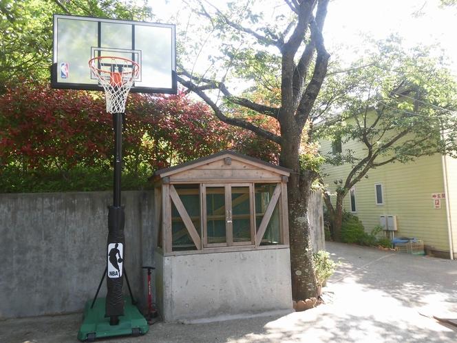 森のバスケットゴール