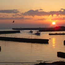 目の前には豊浜漁港が一望。