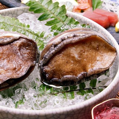 日間賀島周辺で獲れるアワビ