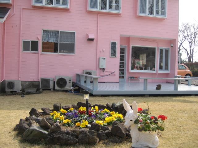 サニーサラダバックヤード花壇