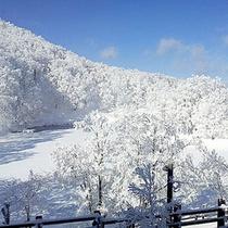 *冬景色/ゲレンデまで徒歩0分の好立地★冬はスキー・スノーボード満喫!