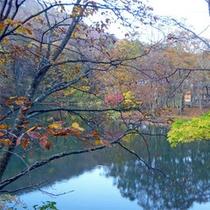 *ドッコ沼の雰囲気/静まり返った湖面と紅葉の景色がきれいです。