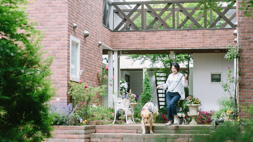 軽井沢の緑の中をワンコとお散歩。清々しい休日♪