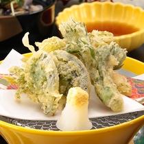 山菜の天ぷら※イメージ