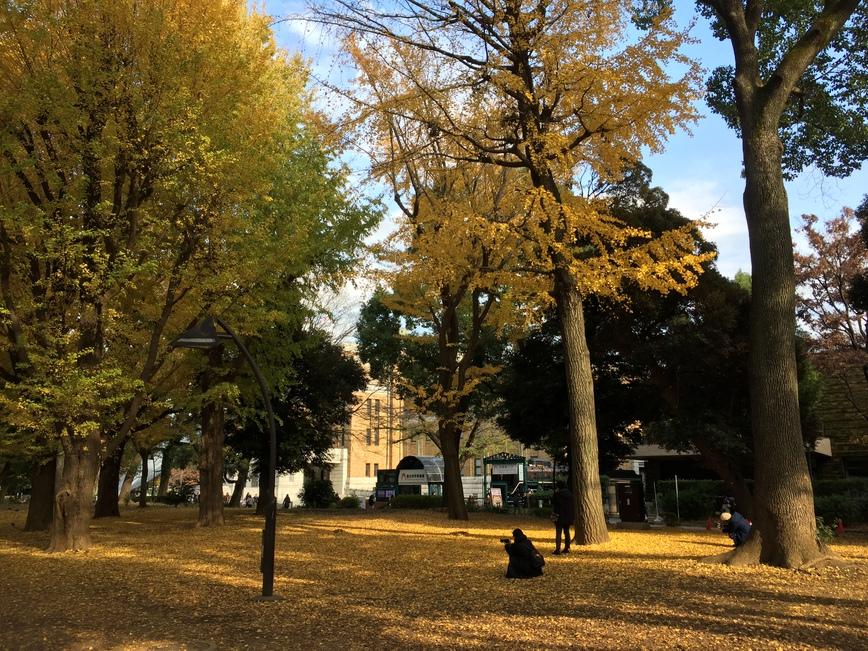 ◆上野恩賜公園◆