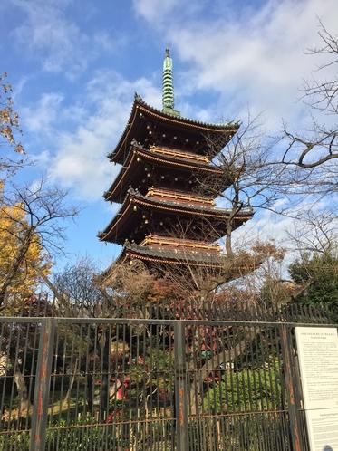 ◆旧寛永寺五重塔◆