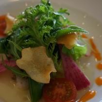 お食事|地元の食材を生かした料理長おすすめの夕食※イメージ