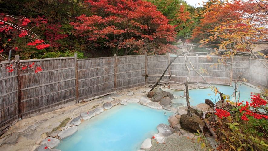 大露天風呂「大気の湯」