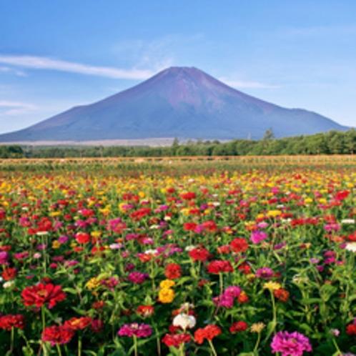 【花の都公園】