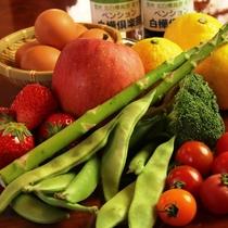 地場産野菜。信州にはおいしい野菜がたくさんあります!