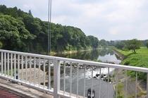大金つり橋から清流を眺める