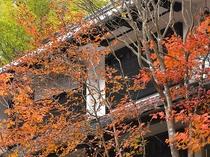 紅葉の本館外観