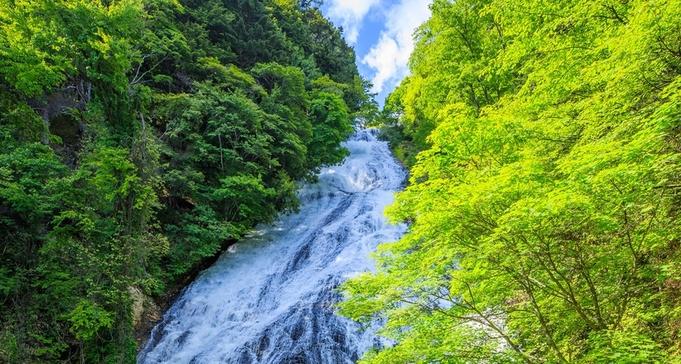 【素泊まり】アクティブなあなたへ♪日光湯元温泉源泉かけ流し100%を満喫プラン