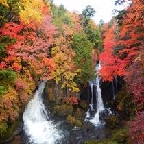 *秋の龍頭之滝(紅葉)