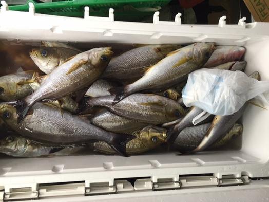 <宿泊船釣りパック>太公望集まれ〜!知多半島沖で船釣りをお楽しみください(2食付)